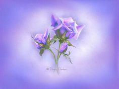 Натюрмортнo-цветочная нежность | Penny Parker (2). Обсуждение на LiveInternet - Российский Сервис Онлайн-Дневников