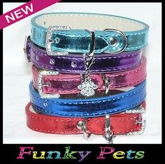 Metallic Puppy Dog Kitten Cat BLING PET Collars PINK BLUE AQUA RED & PURPLE