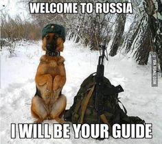 Orthodox Dog user wants to be helpful.