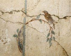 Roman Fresco at Ruins of Pompeii, Campania, Italy Ancient Rome, Ancient Art, Art Romain, Pompeii And Herculaneum, Pompeii Italy, Art Antique, Roman Art, Mural Painting, Tole Painting