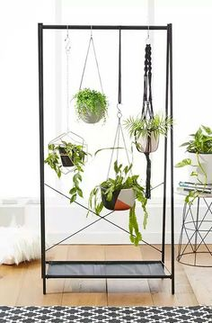 Kmart clothing track $29 used as plant hanger in the living room... Love it!