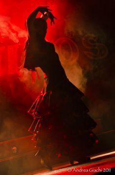 "crescentmoon06: "" 'Flamenco' by Andrea Giachi, via 500px """