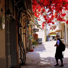 visiting the flowery alleys of the city - island of Kos - Greece - ( best viewed on black ) visitant les ruelles fleuries de la vieille ville de Kos - île de Kos - Grèce Greece Kos, Greece Islands, Warsaw Old Town, Places To Travel, Places To Visit, Old Town San Diego, Old Town Alexandria, Scenery Pictures, Greek Isles