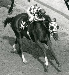 Secretariat with Ron Turcotte up, won the 99th running of the Kentucky Derby on May 5, 1973, in front of Sham ridden by Laffit Pincay, Jr.