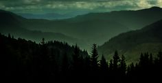 New post on tempetes Bergen, Wilderness, Norway, Sky, Explore, Mountains, Nature, Summer, Travel