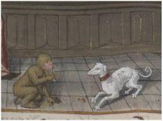 Monkey and dog: Bibliothèque nationale de France, Département des manuscrits, Français 9136 - http://gallica.bnf.fr/ark:/12148/btv1b60004232/f693.item