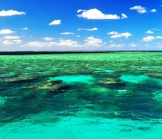 Great barrier reef #australia #greatbarrierreef #cairns #reef #ocean #sea #diving #snorkling #explore #travel #bestoftheday #picoftheday #pictureoftheday #instadaily #instalove #love #instagood #instatravel #instapic #nikontop_ #natgeotravel #natgeo #beautifuldestinations #amazing #tagforlikes #likeforlike #followforfollow #l4l #f4f by andreas_blesl http://ift.tt/1UokkV2