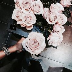 Send flowers to your loved ones with The Bouqs Company. A florist and gift shop specializing in eco-friendly floral arrangements and plant delivery. My Flower, Beautiful Flowers, You're Beautiful, Beautiful Images, Plants Are Friends, Cactus Y Suculentas, Pink Roses, Blush Roses, Pale Pink