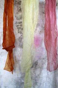 natural dyes from onion skins, grapefruit peels, avocado pits. (Sasha Duerr)