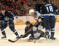 Worcester Sharks forward Yanni Gourde battles Jordan Hill of the St. John's IceCaps for the puck in the neutral zone (Feb. 22, 2014).