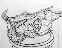cross-contour - Drawing Cross Contour Line Drawing, Contour Drawings, Life Drawing, Painting & Drawing, Structural Drawing, Interesting Drawings, Animal Skeletons, Drawing Course, Scratchboard