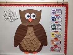 Owl Behavior Chart System!