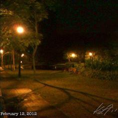 公園 #bgc #park #philippines