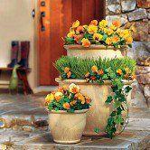 Torres de vasos para flores bem coloridas no jardim