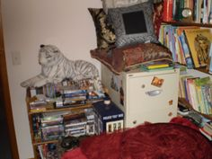 very small part of dvd's filing cabinet and some of my pillow collection