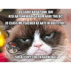 We all had that one person in class That One Person, Dil Se, Cats, Funny, Animals, Instagram, Gatos, Animales, Animaux