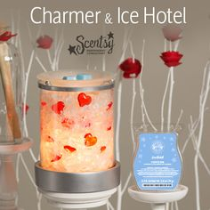 Scentsy January 2015 Warmer of the Month and Scent of the Month: Charmer/ Ice Hotel. Charmer is the warmer for $40.50. It has frosted beach glass and red hearts between panes of glass. ICE HOTEL is the Scent: Crystalline Ice and pure white snow, as you breathe in a cool magical fragrance of blue mint, arctic pine, and winter citrus. https://littlebirdscents.scentsy.us/