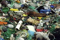 trash-pile.jpg (2233×1495)
