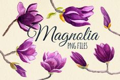 Watercolor magnolia flower set by Yuliya Shora on Creative Market