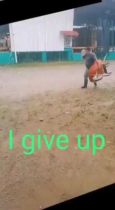 Funny Vid, Funny Clips, Funny Cute, Funny Memes, Hilarious, Satisfying Pictures, Funny Jokes For Adults, Funny Short Videos, Stupid People