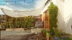 Mantou, Ensenada - Fotos, Número de Teléfono y Restaurante Opiniones - TripAdvisor