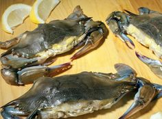 Frozen soft shell crabs are dressed soft shell crabs that are individually wrapped and frozen. We freeze soft shell crabs from May to August so people can enjoy them throughout the year.