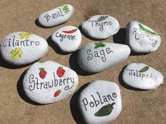 Homemade Garden Markers River rocks, spray paint, paint pen, model paint and polyurethane.