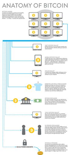 Anatomy of a #bitcoin #infographic http://digitalcurrencyblog.com/infographics/18-anatomy-of-a-bitcoin #btc