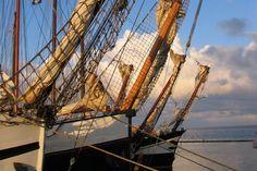 West-Terschelling, haven. Bruine vloot. www.pieterbroertjes.nl