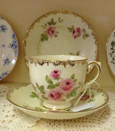 Vintage Salisbury English Bone China Tea Cup Trio Dijon Floral Roses Gold