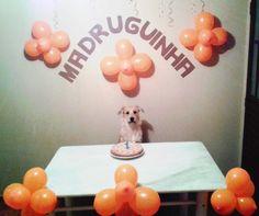 Este é o Madruguinha e esta é a sua festa de 1 ano.