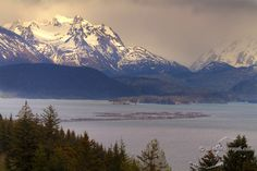 Homer, Alaska: One of the most beautiful places on earth.