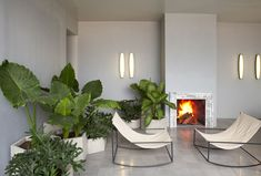 Hoteliers Carlos Couturier and Moisés Micha, the creative minds behind Grupo HABITA, joined forces with local architectural firm, Estudio5, to transform the 1940s mansion into Guadalajara's first d…