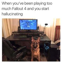 Is it just me or theres a dog in my room?  fallout fallout 4 dogmeat gaming