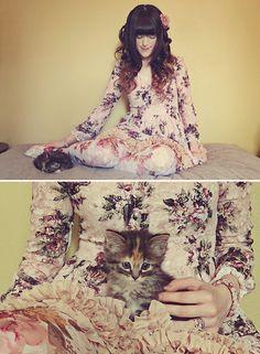 My new kitten, Bounty! (by Ashlei Louise) http://lookbook.nu/look/3835331-My-new-kitten-Bounty