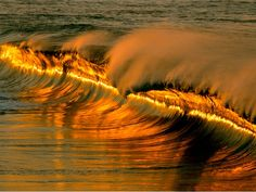 socioecohistory.files.wordpress.com 2012 06 gold_tidal_wave.jpg