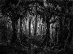 29 best Creepy Forest images in 2014 | Fantasy art