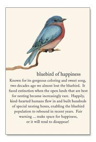 Bluebird of Happiness by Cardthartic ~Known for its gorgeous coloring and sweet song, two decades ago we almost lost the bluebird. It faced extinction when the open lands that are best for nesting became increasingly rare...Fair warning, make space for happiness or it ends to disappear!
