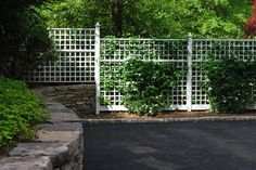 6' Fence Trellis - Garden Metalwork for your Home, Business  Garden