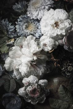 hoaxvault:   Cornelis van Spaendonck, Still Life... | Hogan McLaughlin