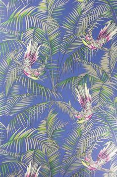 Papier peint Matthew Williamson Sunbird W6543-04
