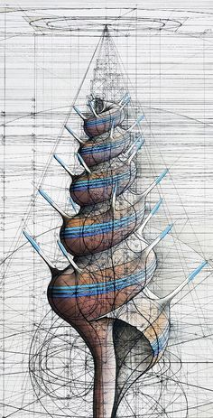 Cálculo: Extraordinary Geometrical, Fibonacci, and Logarithmic Drawings by Rafael Araujo Math Art, Science Art, Geometry Art, Sacred Geometry, Fibonacci Spiral, Oeuvre D'art, Art Drawings, Shells, Fine Art Prints