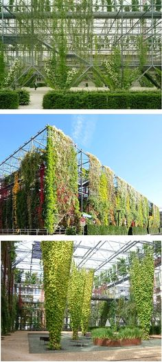 Garden park living plant wall Zurich Switzerland