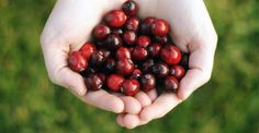 25 Greatist Superfoods and Why They're Super