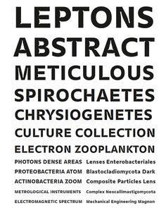 Gemeli, Proto Grotesk, Minotaur | Slanted - Typo Weblog und Magazin