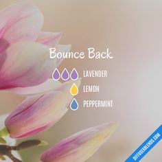 Bounce Back - Essential Oil Diffuser Blend
