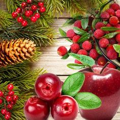 Country Christmas Fragrance Oil | Natures Garden Scented Oils #christmas #country #spicescent