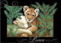 Item #23810 - Lion and Lamb Boxed Christmas Cards