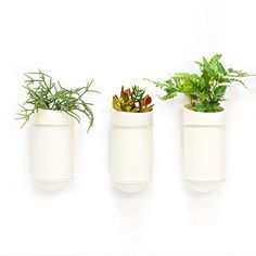Porcelain Wall Planter