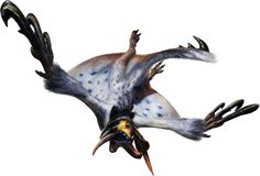 Ash Kecha Wacha are a Subspecies of Kecha Wacha introduced in Monster Hunter 4 Ultimate. In contrast to the bright orange pelt of the normal species, it has a washed blueish fur with black coloration on the hands, feet and head. The mask on its ears has a yellow-orange pattern on a dark background.